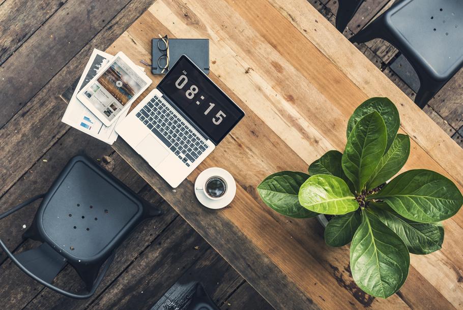 Piante Ufficio Stress : Vita da ufficio le piante che aiutano il benessere complesso